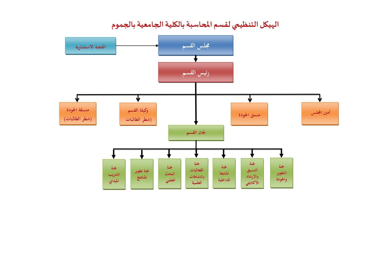 الهيكل التمظيمى لقسم المحاسبة
