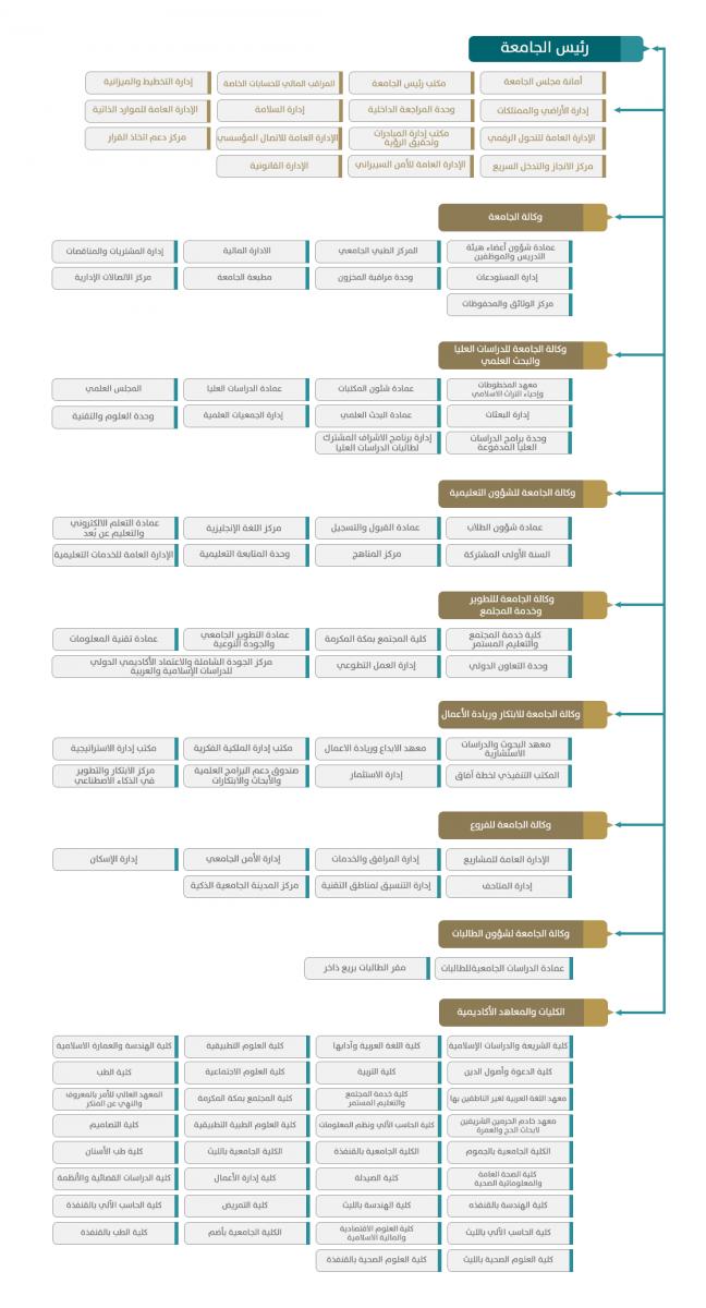 الهيكل التظيمي للجامعة